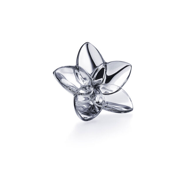 THE BLOOM COLLECTION, Argento