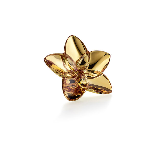 THE BLOOM COLLECTION, Oro
